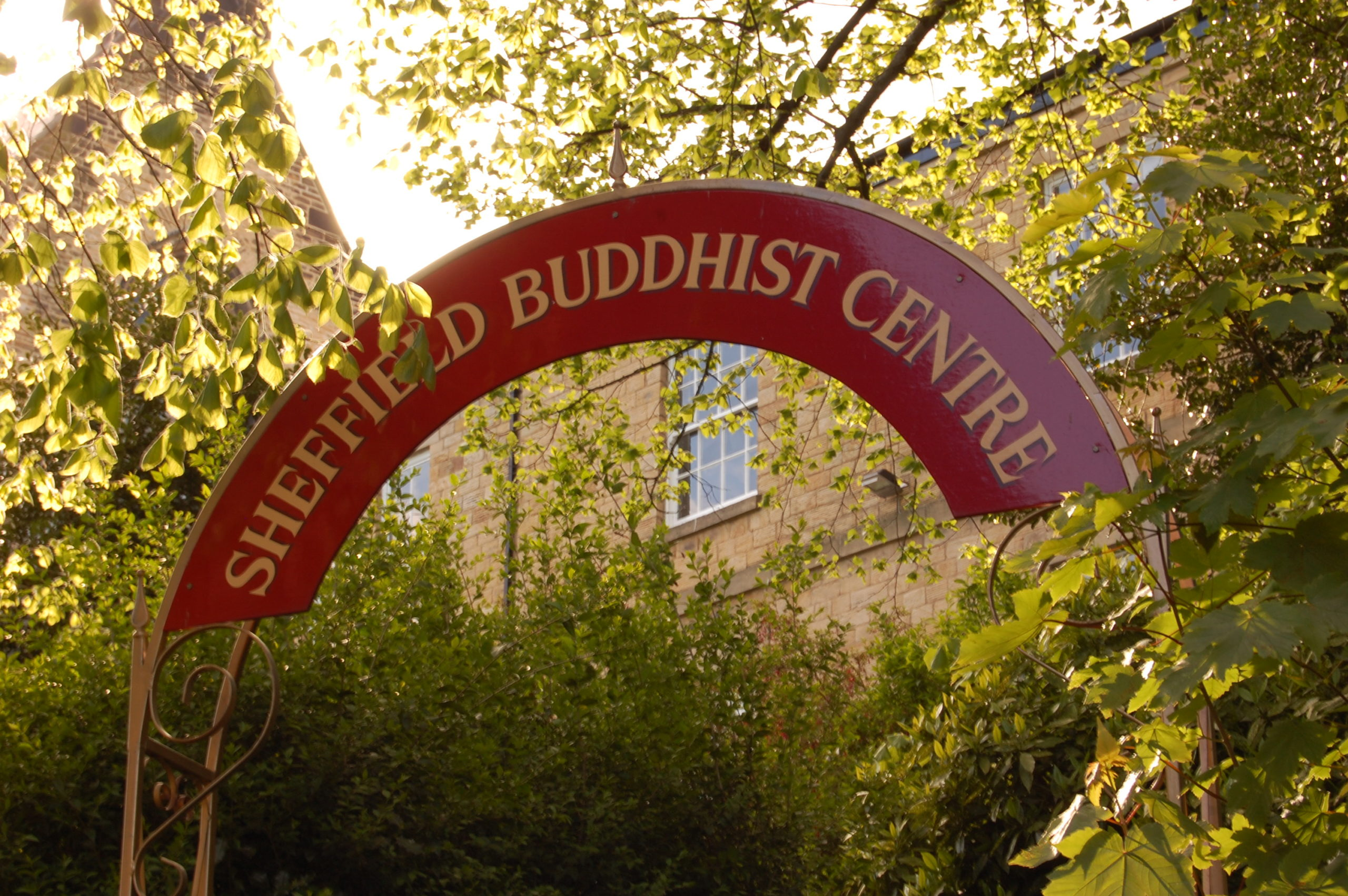Introducing Buddhism & Meditation